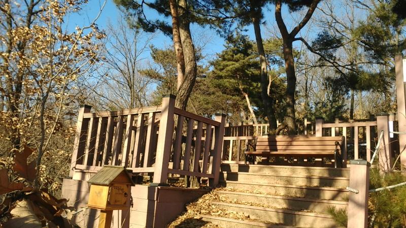 녹지과-성남누비길 2구간 검단산 갈마치고개 연리지 나무 앞에 설치한 스탬프 인증대