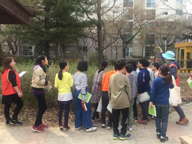 환경정책과-이매초 4학년생들이 학교 숲 관찰 중이다(4월 3일)