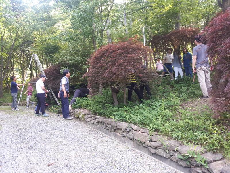 녹지과-성남 가드너 교육생들이 지난해 5월 신구대학교 식물원에서 정지 전정 실습 중이다