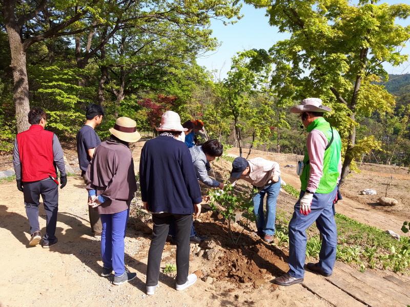 녹지과-성남 가드너 교육생들이 지난해 4월 신구대학교 식물원에서 식재와 관수 실습 중이다