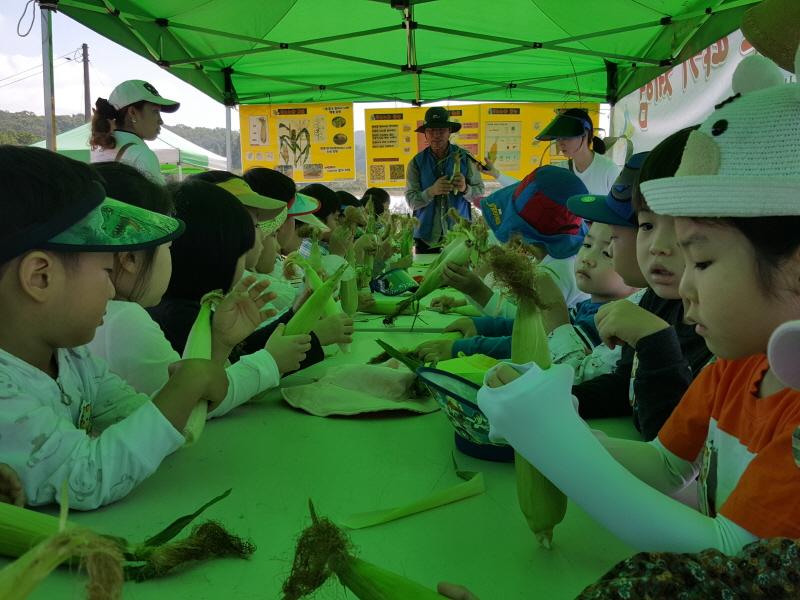 농업기술센터-성남시민농원에서 지난해 7월 열린 옥수수 따기 체험 행사 때 농작물 특성 설명 중